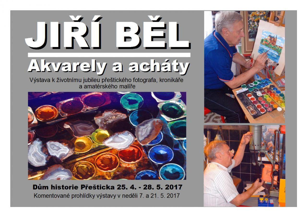 Akvarely a acháty - Jiří Běl